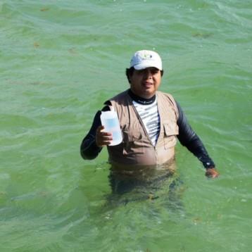 Las playas de Quintana Roo, 100 por ciento aptas para uso recreativo