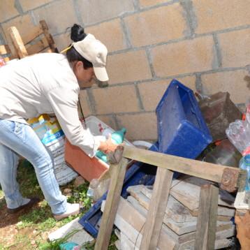 Implementa SESA en Playa del Carmen SESA acciones para combatir enfermedades transmitidas por vector