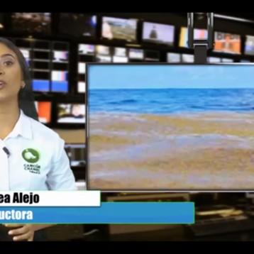 VALLAS ECOLÓGICAS PARA EVITAR LLEGADA DEL SARGAZO A LAS COSTAS DE QUINTANA ROO