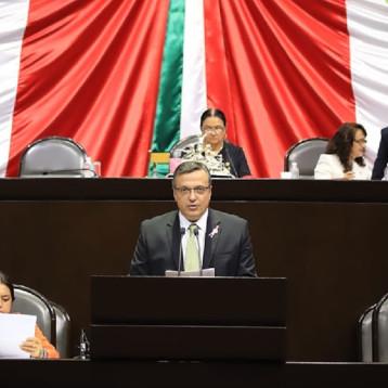 Llamado urgente del diputado  Luis Alegre  a la SHCP y al Fonden para liberar recursos y combatir el sargazo en Q. Roo